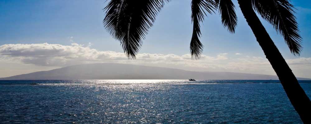 HTA, Tor Johnson, Maui